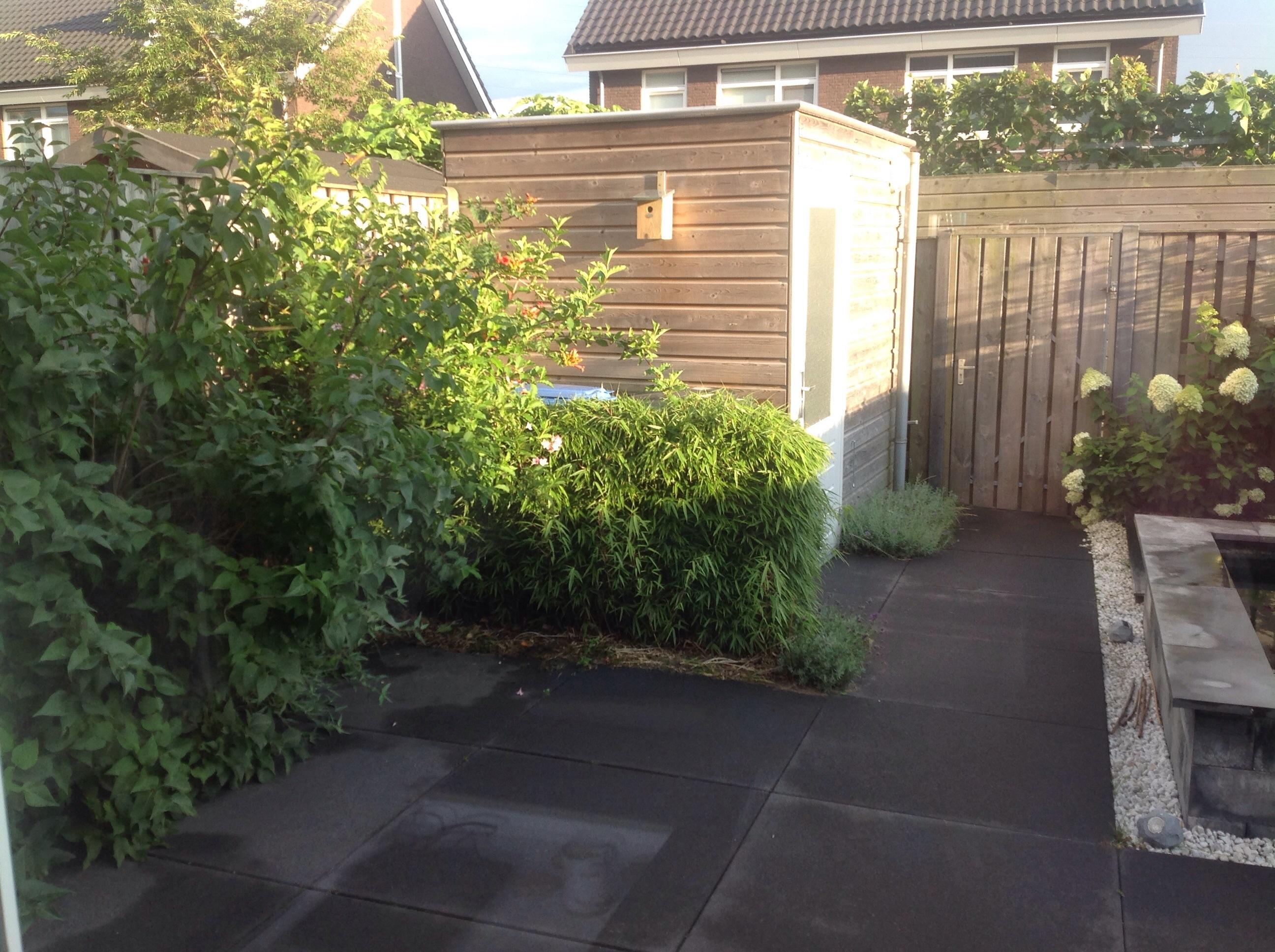 Tuin beplanting suggesties wonen verbouwen got for Tuin verbouwen