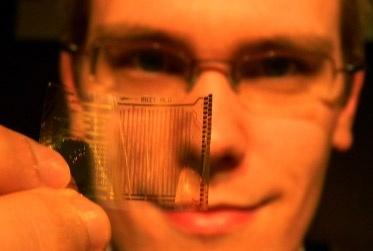 Plastic processor