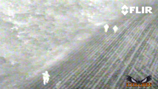Condor Aereal infraroodbeeld
