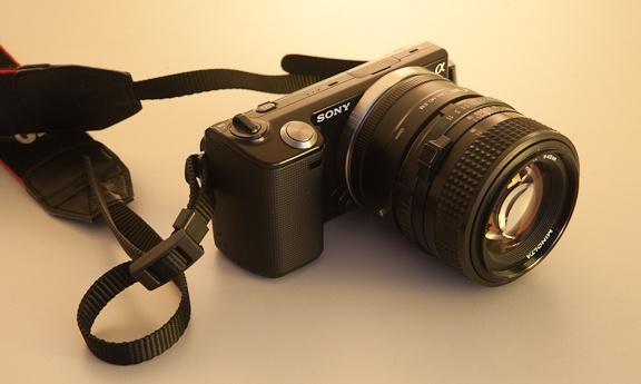 Sony NEX-5 + Minolta 50mm 576px