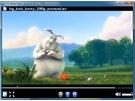 VSO Media Player screenshot