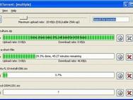 BitTorrent 4.4 screenshot (resized)