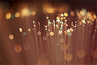 fiber glasvezel