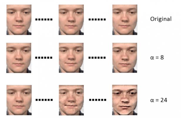 micro-uitdrukkingen algoritme