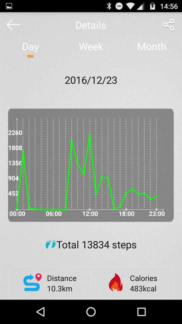 aantal stappen van een bepaalde dag
