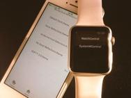 Apple Watch jailbreak