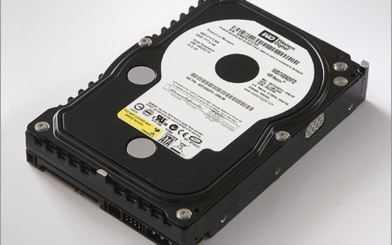 Western Digital Raptor WD740ADFD 74GB (groot, HQ)