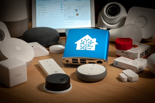 Home Assistant case