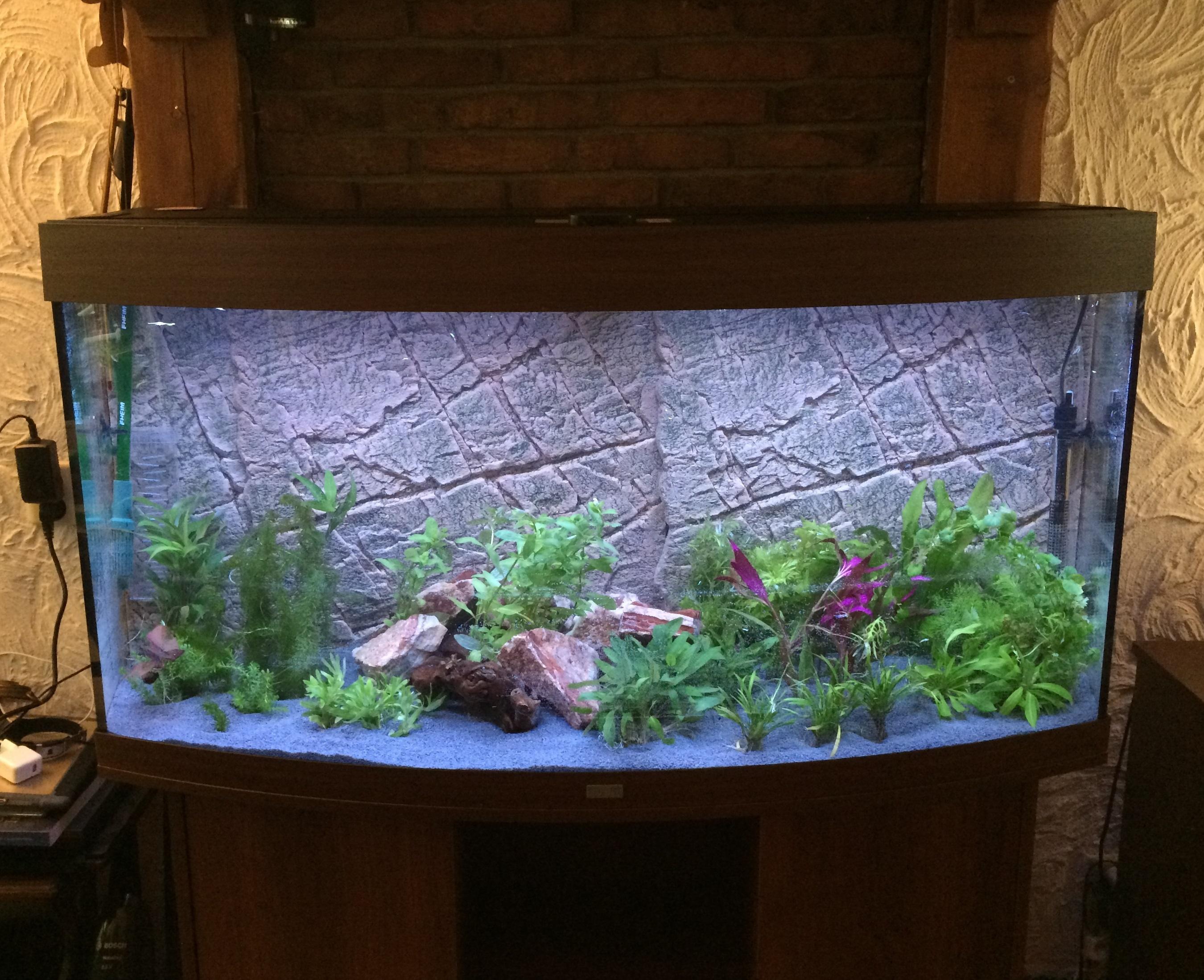 het aquarium topic deel 8 algemene zaken got