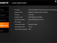 Lan Optimizer System info