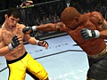 Ultimate Fighting Championship 2009: Undisputed