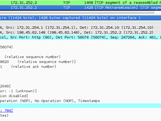 IPIP wireshark example